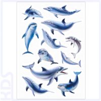 Herma Stickers 'Dolphins', Foil Jewel